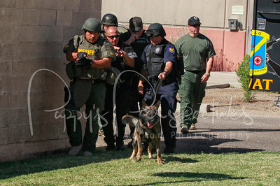 Basic K9/SWAT Deployment School 2012