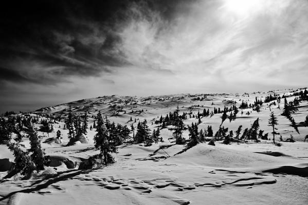 Best Nature/Landscape Shot 13S