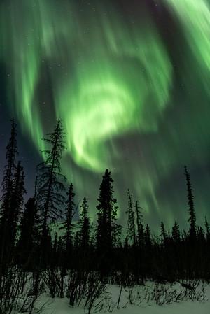 Auroral Storm
