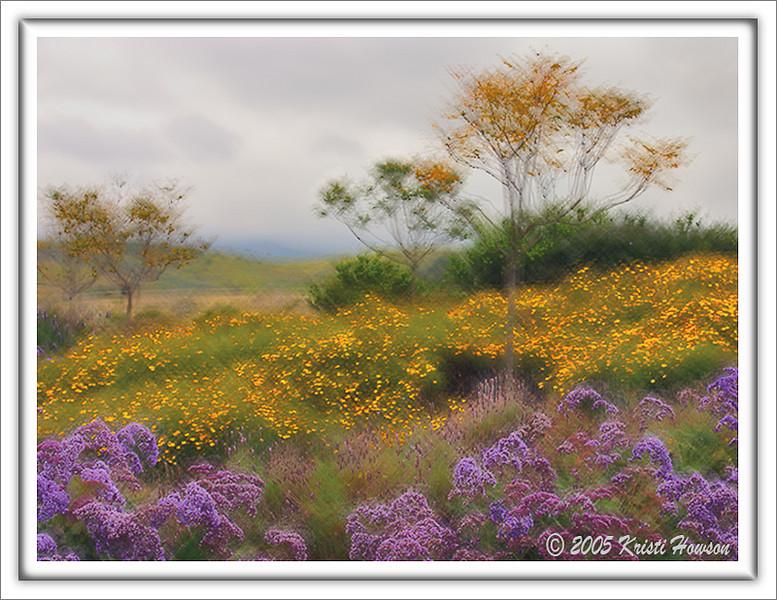 Monet Inspiration (Someday Soon)