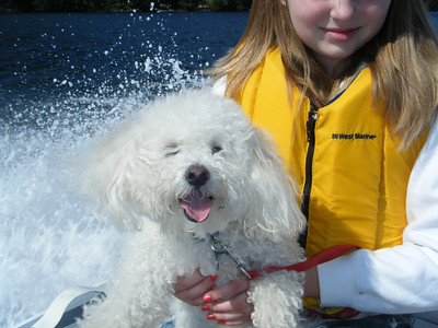 Everyone, including Johnny the dog, enjoys a ride on the dinghy on a sunny day.