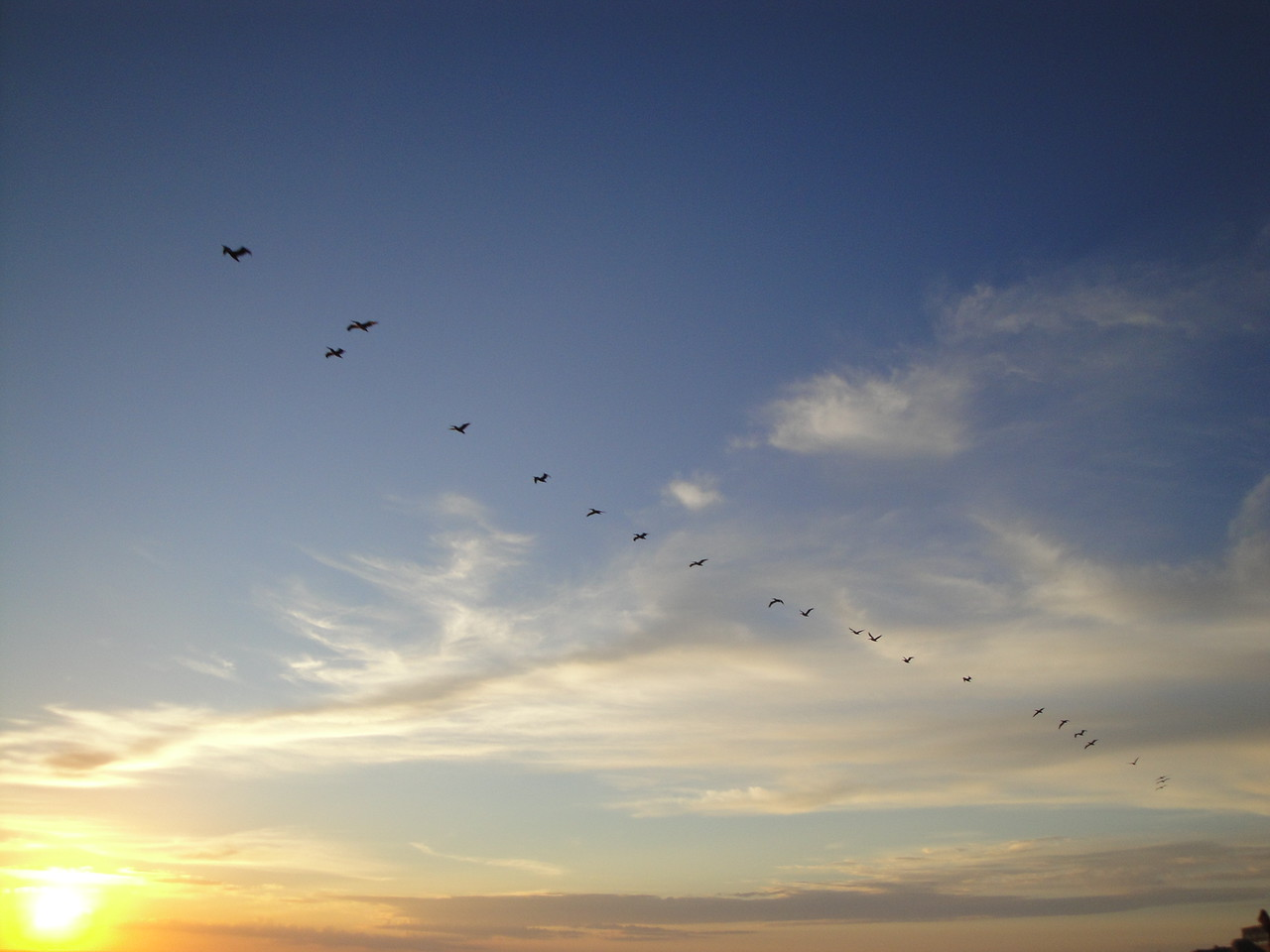 A squadron flies over the Sea of Cortez, Mexico