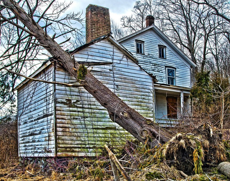 3. Tree Fall On House