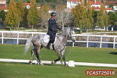 FCAST25018