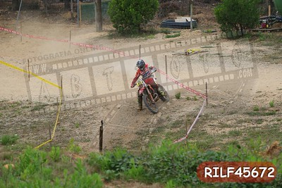 RILF45672
