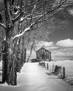 Gerry  Legere - 1st Place - Junior Monochrome Print