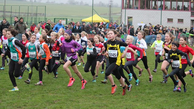 Cross de Wanze 2016