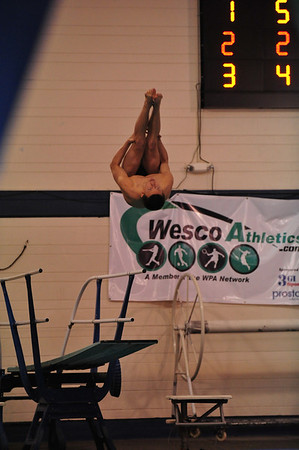 Diving 2012