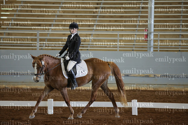 2013 Blue Angel Dressage Spring SAT.