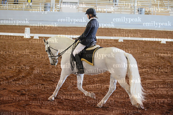 2011 Fall Blue Angel Dressage Show