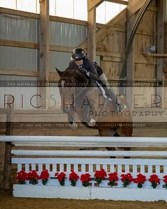 "Cjl/SNOWBIRD USEF ""A"" NAT'L & OUTREACH HORSE SHOW  January 4 - 6, 2019"