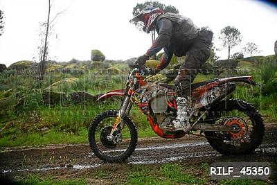 RILF_45350