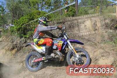 FCAST20032