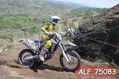 ALF 75083