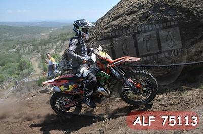 ALF 75113