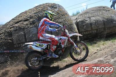 ALF 75099