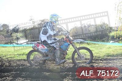 ALF 75172