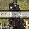 East Freehold Park Horse Shows : 6 galleries with 1627 photos