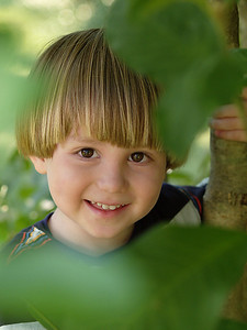 "24 - ""Hide-and-seek"" by bg2b Our son hiding in his favorite tree. Cropped a bit, adjusted color balance, cleaned up some skin blemishes."