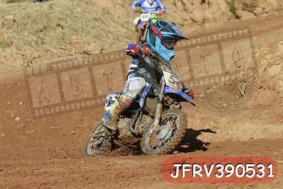 JFRV390531