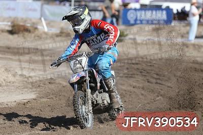 JFRV390534