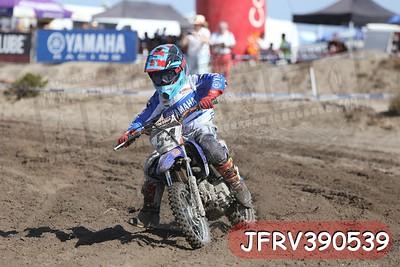 JFRV390539