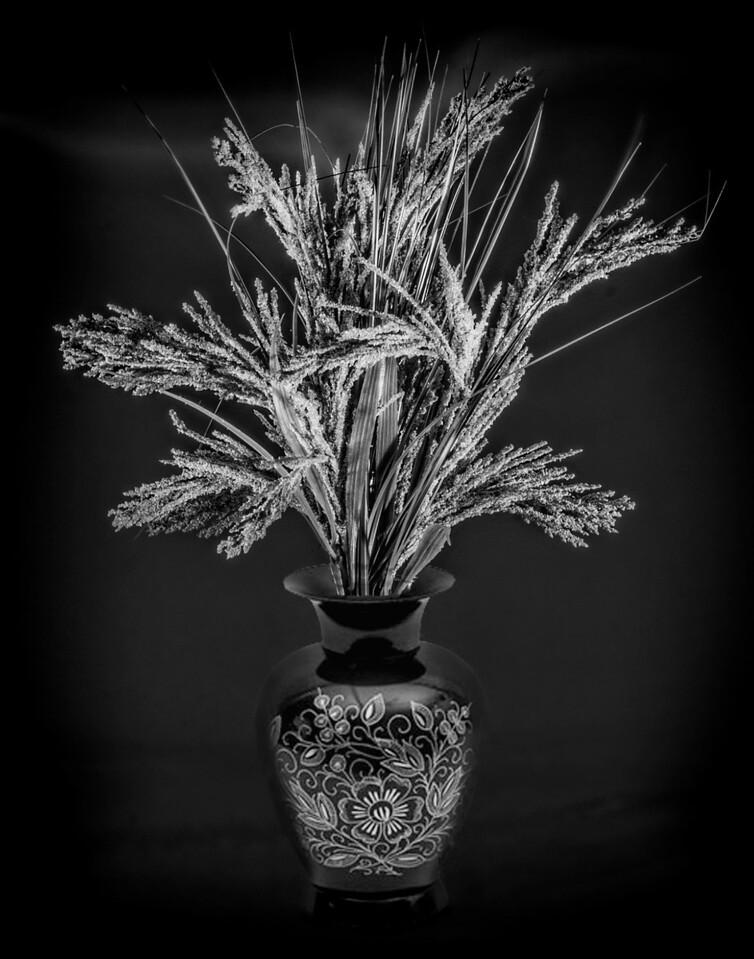 8 Plant Arrangement