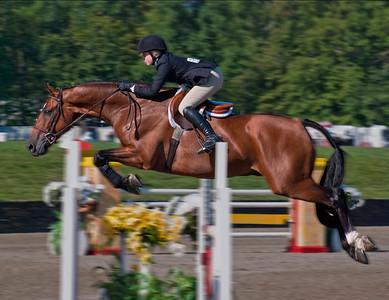 3. Horse Jumper; Saugerties, NY