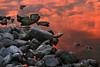 Sunset on the Rocks, Ocean City MD