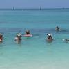 The Snorklers