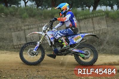 RILF45484