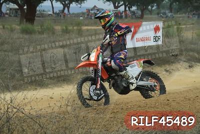RILF45489