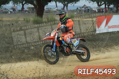 RILF45493