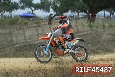 RILF45487