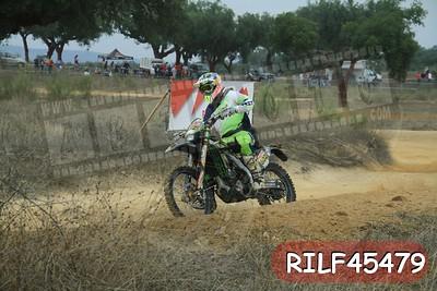 RILF45479
