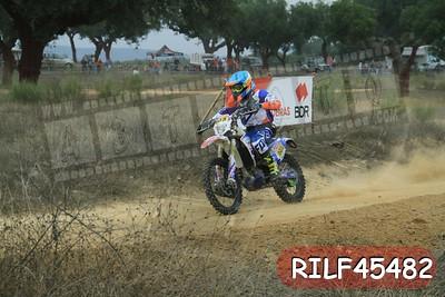 RILF45482