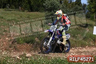 RILF45271