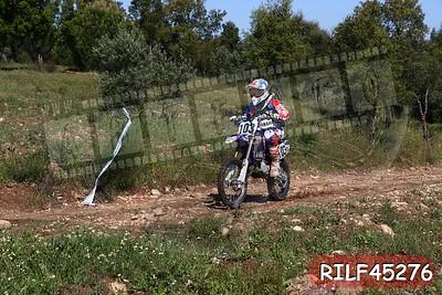 RILF45276