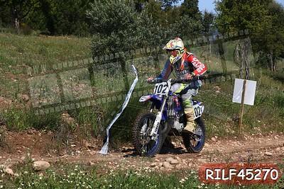 RILF45270