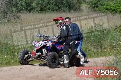 ALF 75056