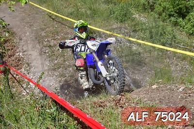 ALF 75024