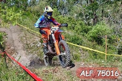 ALF 75016