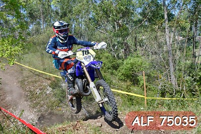 ALF 75035