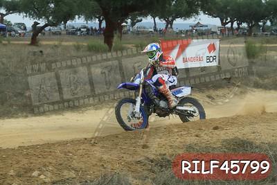 RILF45799