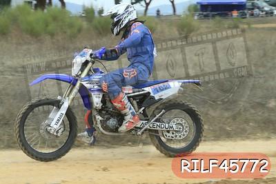 RILF45772