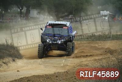 RILF45889