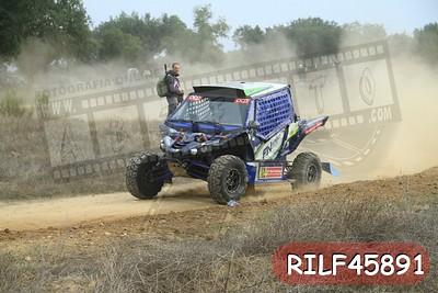 RILF45891