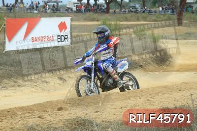 RILF45791