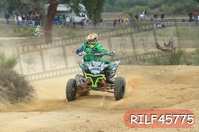 RILF45775