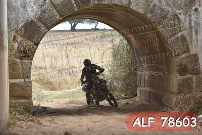 ALF 78603